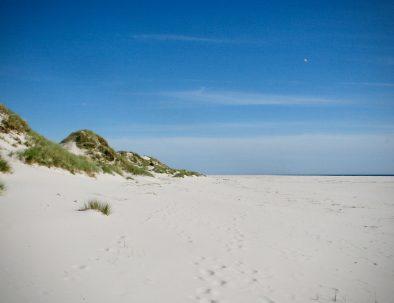 Strand und Dünen_weit_2000